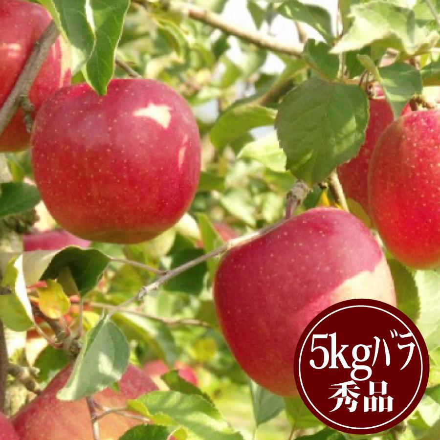豊田の蜜入りふじりんご5kgバラ