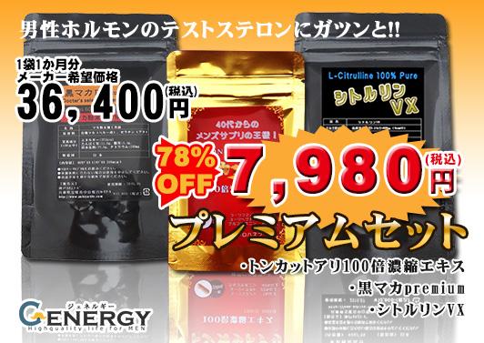 【ジェネルギーシリーズ】ナイトエナジー・プレミアムセット