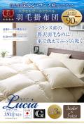 【ネット限定・送料無料】エクセルゴールドラベル付き・安心の日本製・洗えるフランス産ホワイトダウン90%羽毛布団:キングサイズ直送