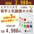 【定期コース】イヌリン入り 菊芋と乳酸菌の小粒3袋 【メール便対応商品】