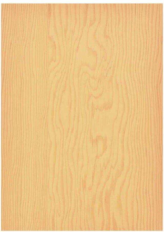 森の紙 極薄 天然木の紙 松 葉書サイズ 5枚入り インクジェットプリンター印刷 メール便