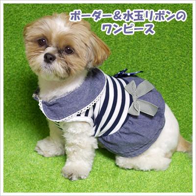 ボーダー&水玉リボンのワンピース(犬の服)