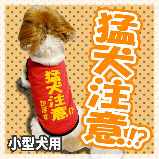 【名前入り】猛犬注意!?犬の服(おもしろTシャツ)
