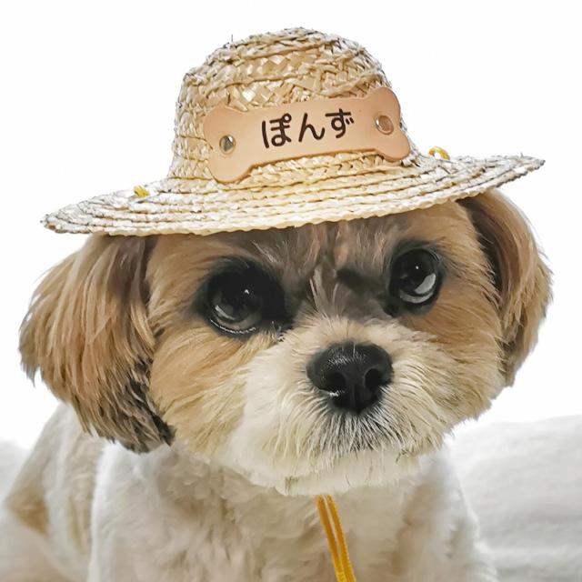 ペット用の麦わら帽子 骨型名札付き