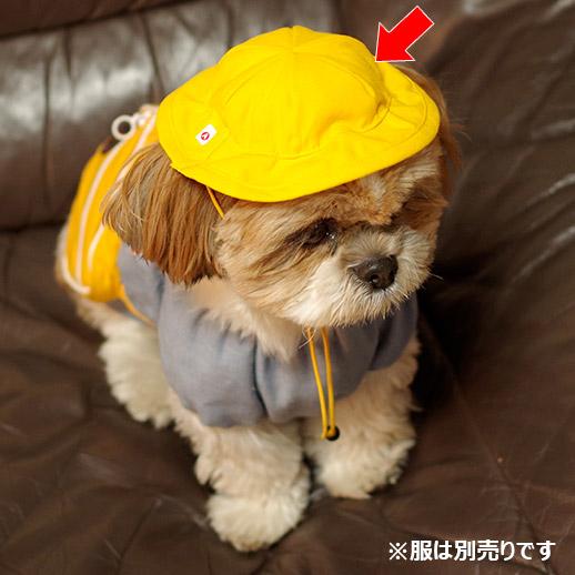ペット用幼稚園の黄色い帽子