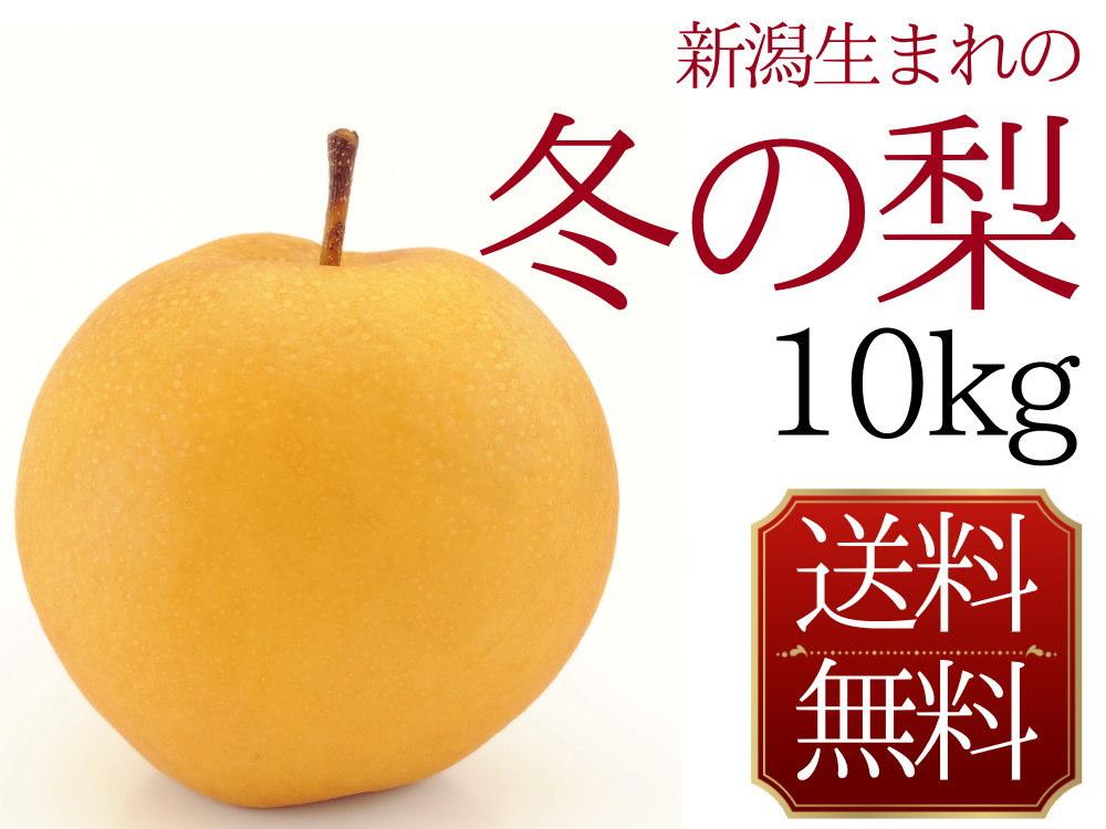 新潟生まれの冬の梨。新興梨10kg
