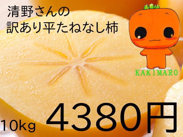 清野さんの訳あり平たねなし柿10kg4380円