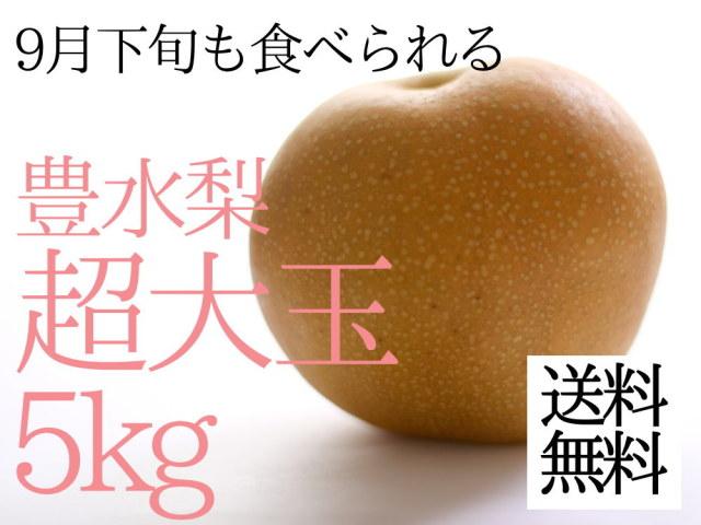 仲村農園の豊水梨の超大玉4L5kgが4380円
