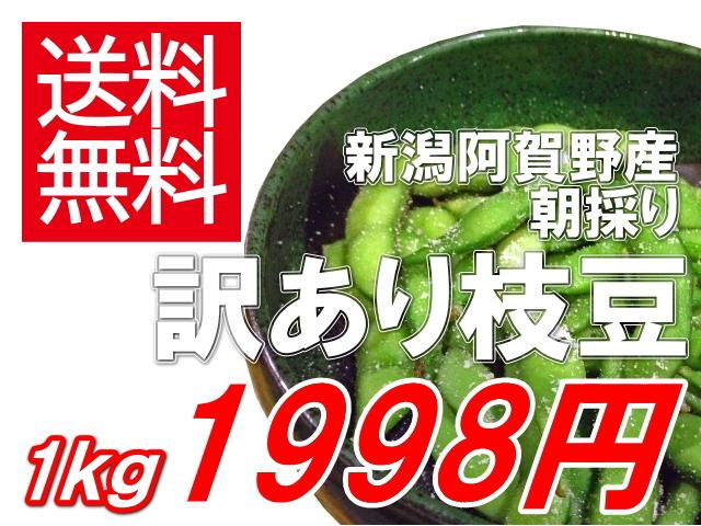 新潟県阿賀野産朝採り枝豆 訳あり1kg1998円