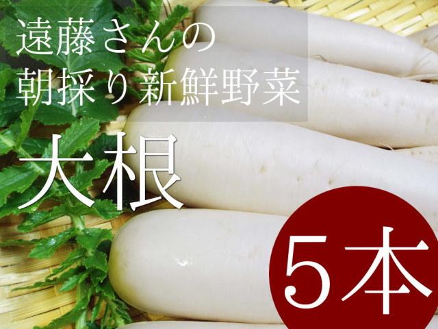 遠藤さんの朝採り新鮮野菜 漬物用大根5本セットが送料無料