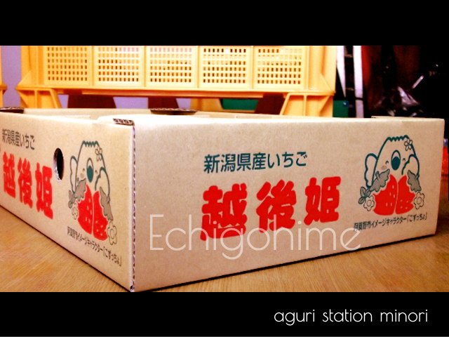 越後姫800gのパッケージ写真(横)