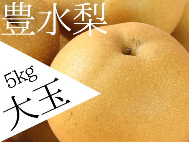 仲村農園の完熟豊水の大玉3L5kgが4180円