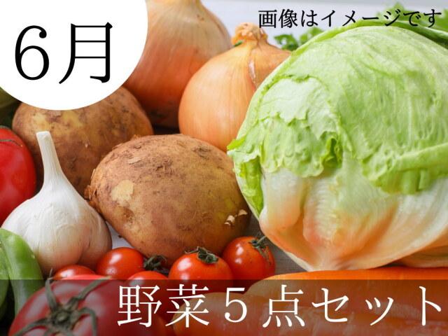 6月の朝採り新鮮野菜5点セットが送料無料