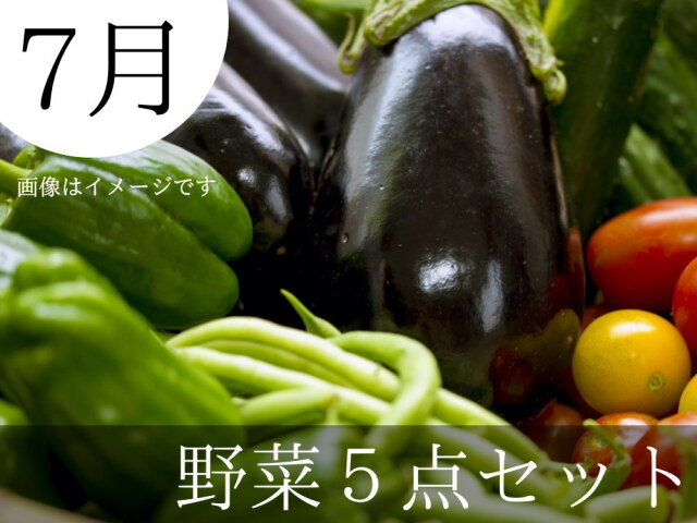 7月の夏野菜詰合せ5点セット 農家直送