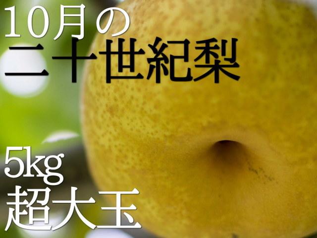 仲村農園の二十世紀梨は、10月も食べられる