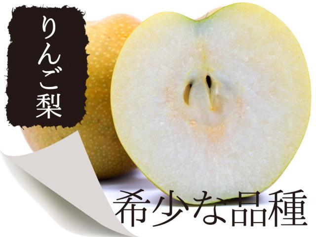 リンゴ梨と呼ばれる希少な品種。新星