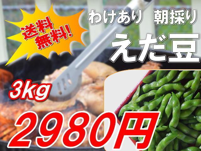 新潟阿賀野産遠藤さんの訳あり枝豆3kg2980円
