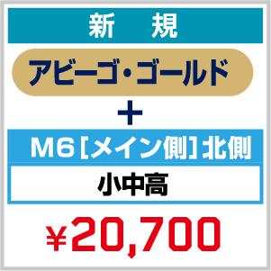 【新規】2021_FC 年会費(アビーゴ・ゴールド)+ シーズンシート_M6[メイン側]北側 小中高