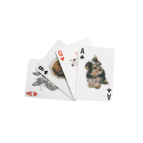 犬,動物,トランプ,キッカーランド