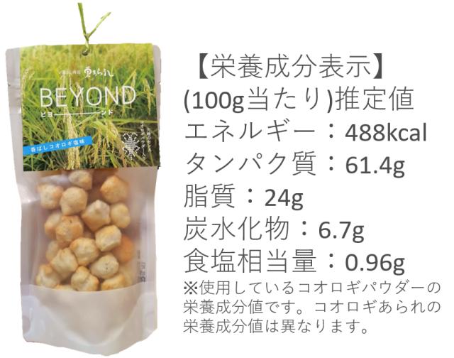 beyond説明2