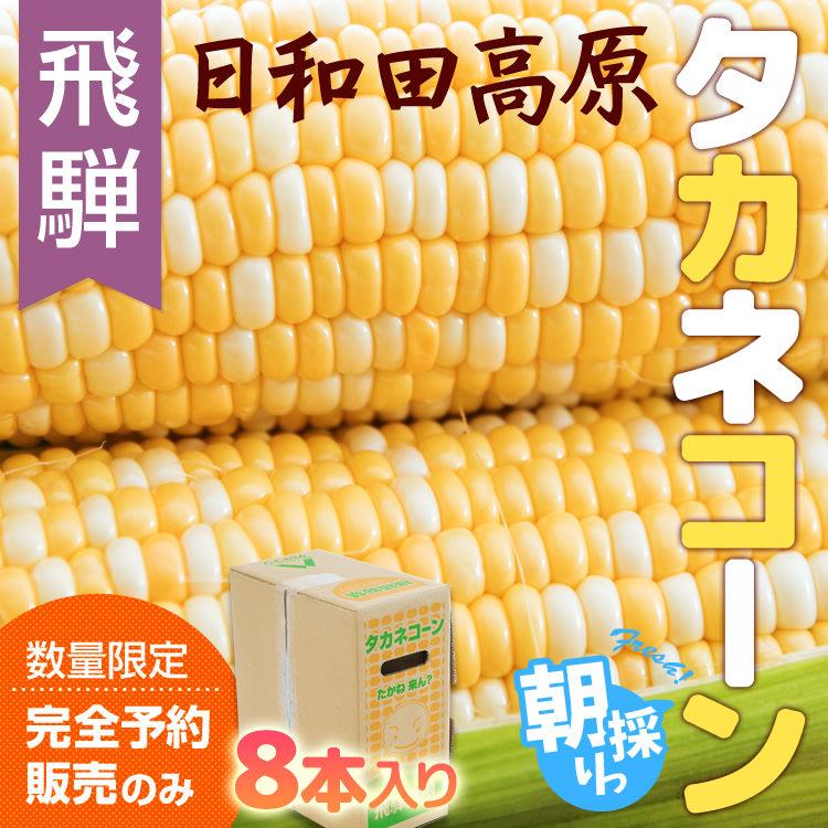 タカネコーン_01