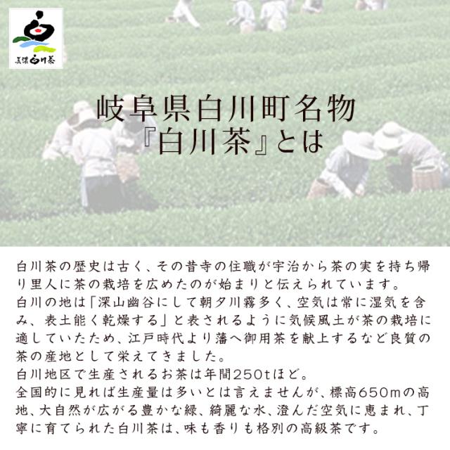 白川茶松露_03