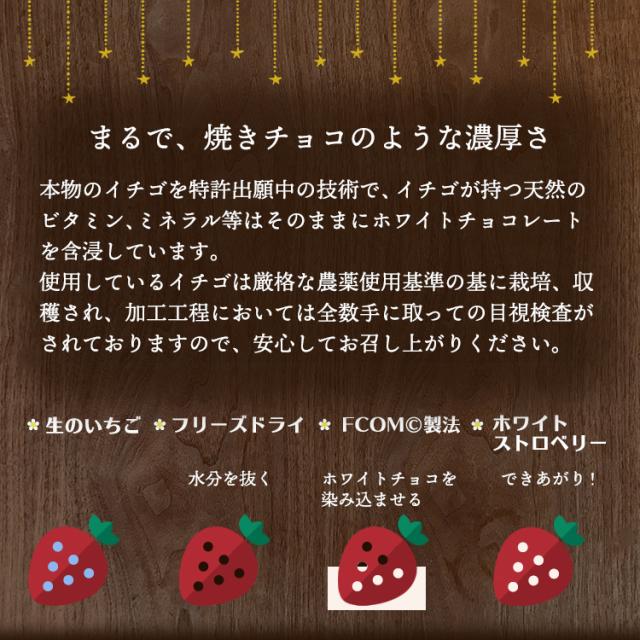 苺の結晶_02