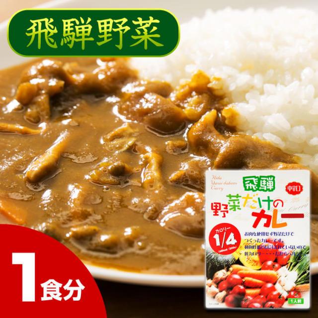 野菜だけのカレー(中辛)_01