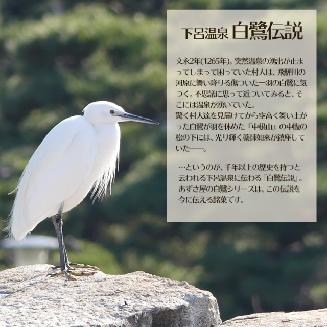 白鷺の宵10_04