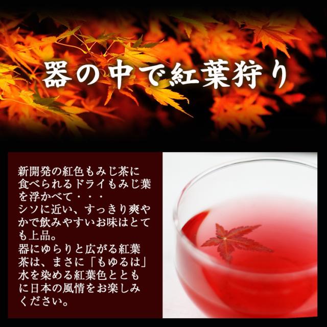 紅葉茶_02