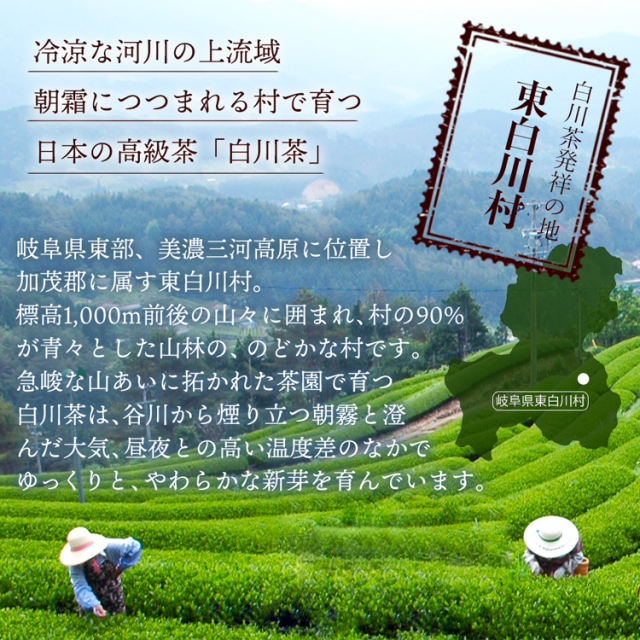 白川茶天皇杯桐箱入り_05