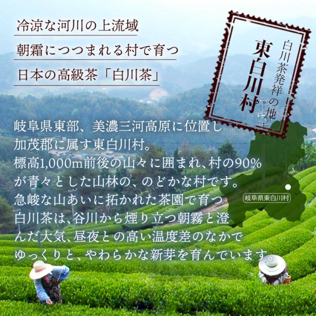 特上焙じ茶_05