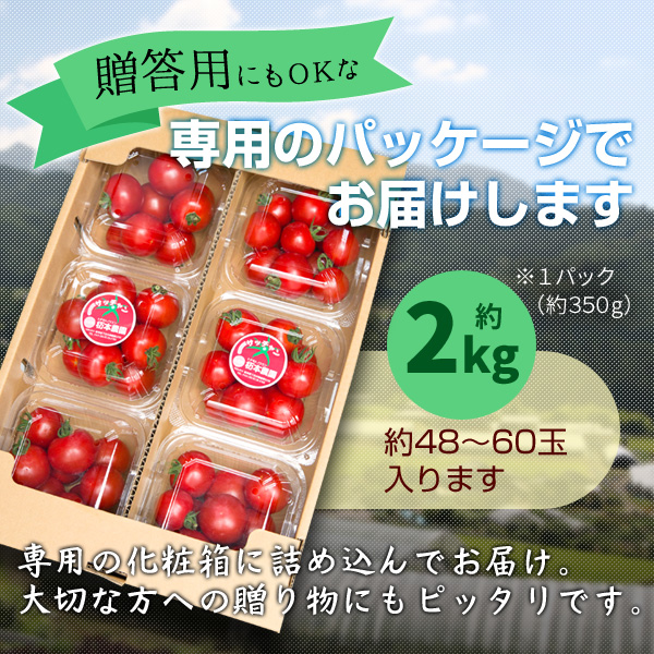 フルーツトマト_カート03