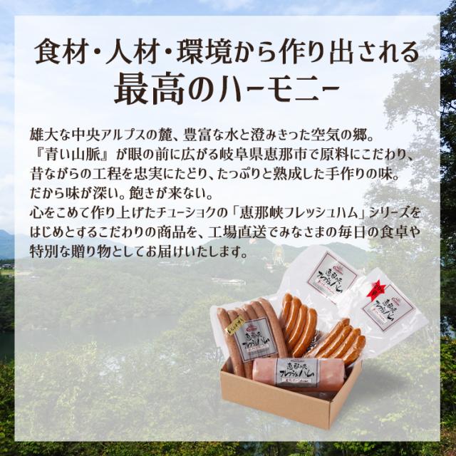 恵那峡ハムBセット_04