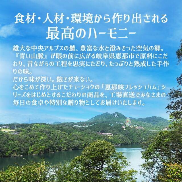 恵那峡ハムCセット_04