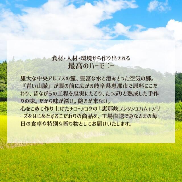 岐阜の3種のサラミ_04