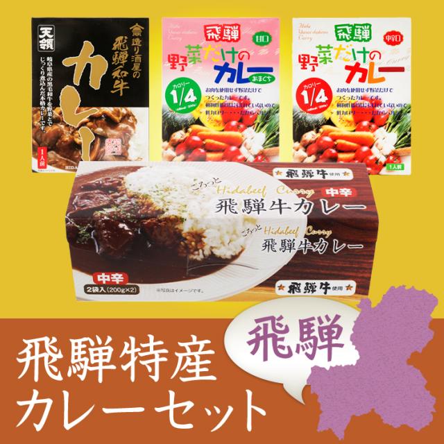 飛騨特産カレー 4点セット(計5食) ミールキット レンチン//