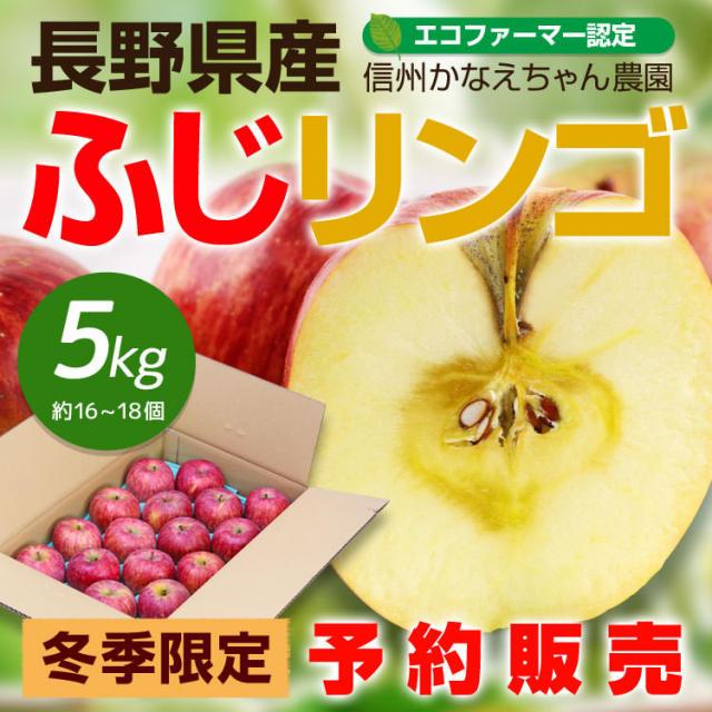 かなえちゃんリンゴ_01