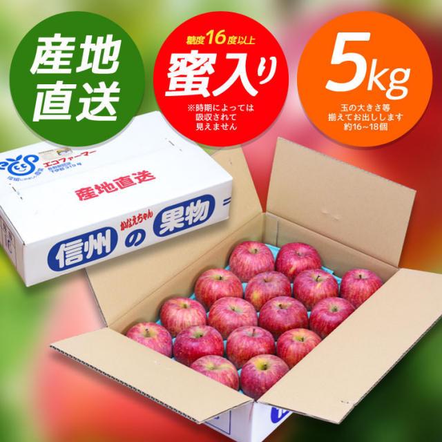 かなえちゃんリンゴ_05