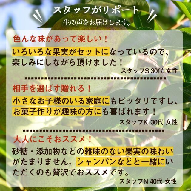 ドライフルーツ5種セット_09