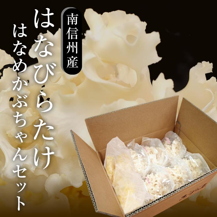 はなめかぶちゃんセット_01