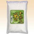 でんぷん米0.1(もち粉なし) 1kg(袋入)