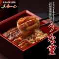 【冷凍介護食】摂食回復支援食あいーと 愛知県三河産 うな重 119g