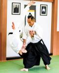 【6/16開催】養神館 安藤毎夫主席師範「達人への道」特別公開セミナー