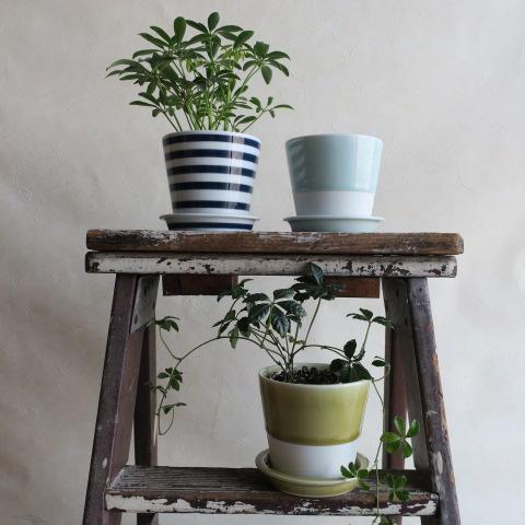 【波佐見焼】テーブルポット(植木鉢)バイカラー