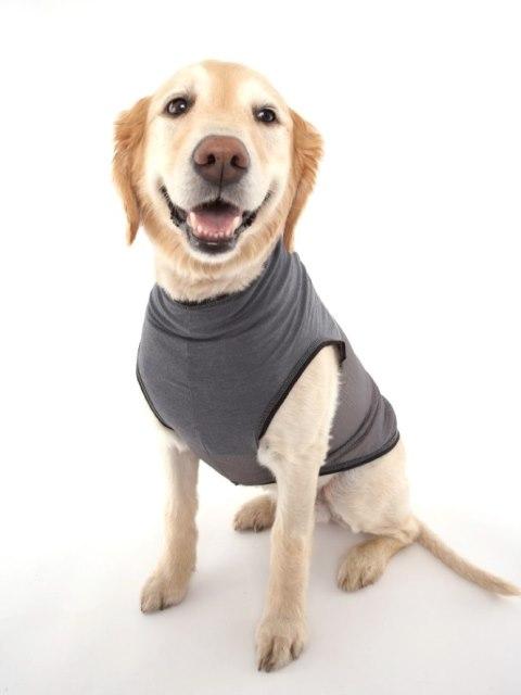 Doggles インセクトシールド防虫Tシャツ