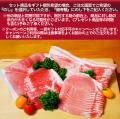 梅肉ポーク しゃぶしゃぶセット(5人前)