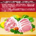 梅肉ポーク とんかつセット(計8枚)