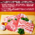 梅肉ポーク 焼き肉セット(約5人前)