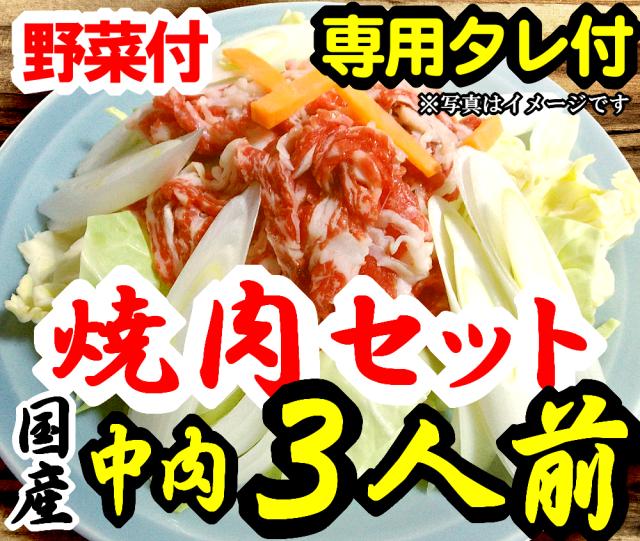 【F-3】さくら焼肉(スライス)&野菜セット詰め合わせ3人前 野菜付 専用たれ付 馬肉 桜肉